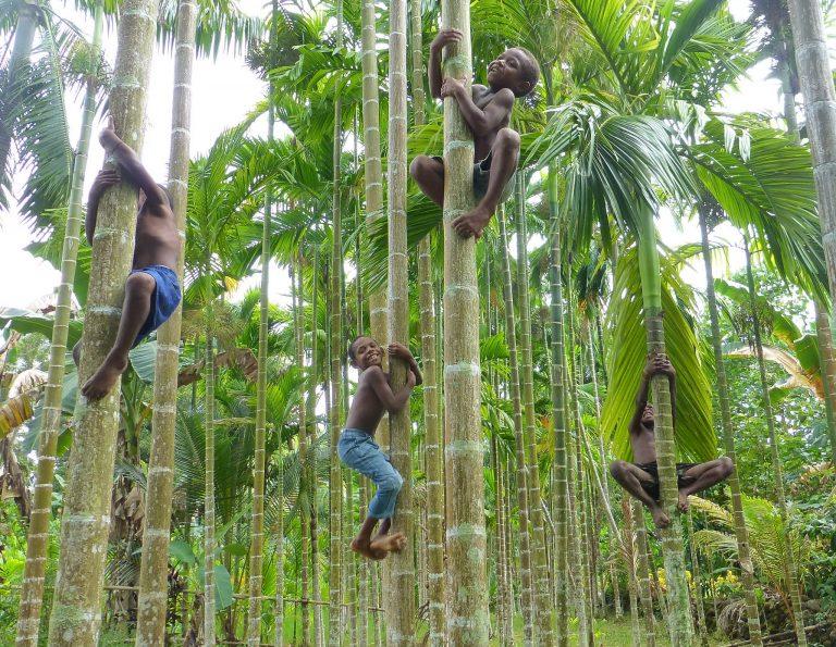 Μελανησία, Παπούα, Φίτζι, Νησιά Σολομώντος Ταξίδι 20 ημερών